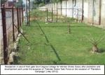 Govt.-Degree-College-for-Women-Dhoke-Hassu-July-2012-(5).jpg