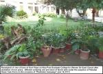 Govt.-Viqar-Un-Nisa-College-10-1-13(4).jpg
