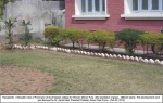 Mohan-Pura-College-22-2-2014(1).jpg