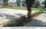 Mohan-Pura-College-22-2-2014(12).jpg