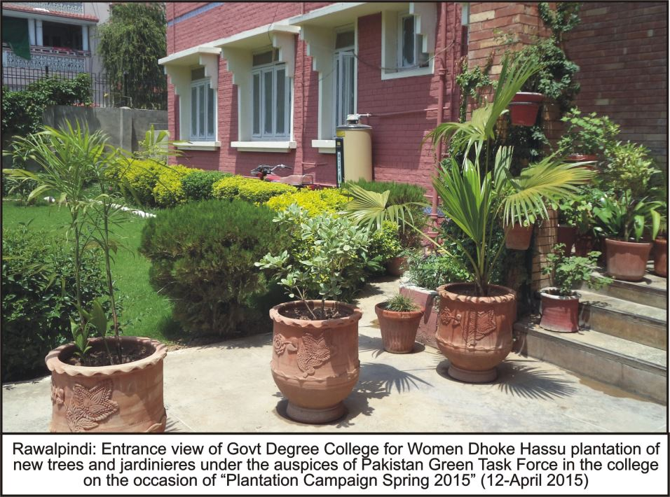 12-04-2016-dhoke-hassu-degree-college-plantation-1