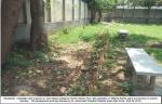 Mohan-Pura-College-22-2-2014(11).jpg